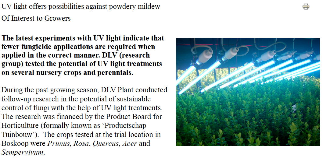 UV-light offers possibilities against powdery mildew
